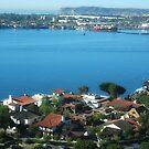 San Diego Bay by photorolandi