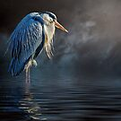 Blue Heron Moon by Brian Tarr