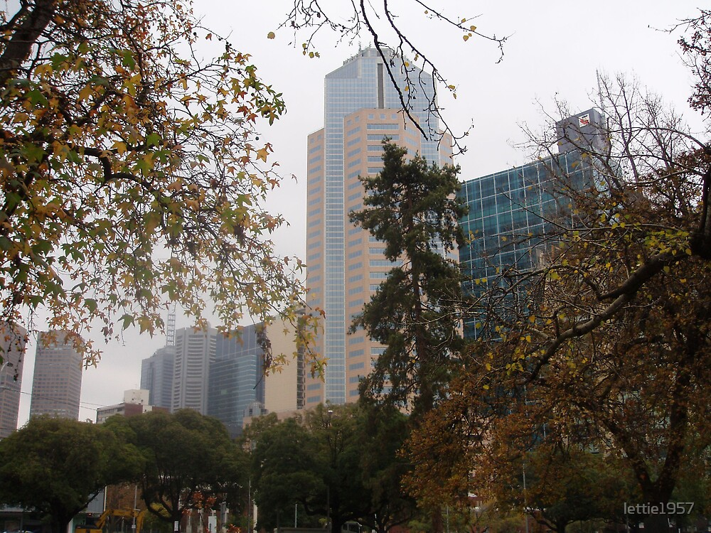 City buildings -  Melbourne from Exhibition Gardens. by lettie1957