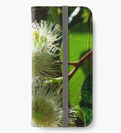 Eucalypt iPhone Wallet