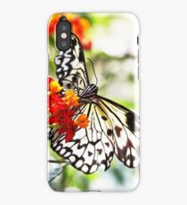 05 - Spring Time  iPhone Case/Skin