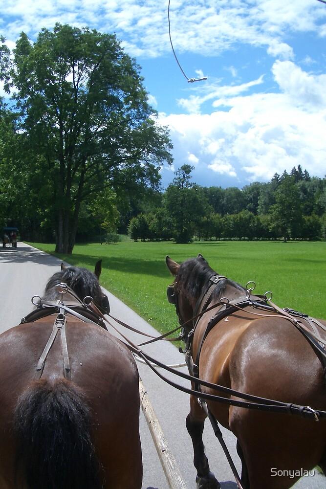 Horses by Sonyalau