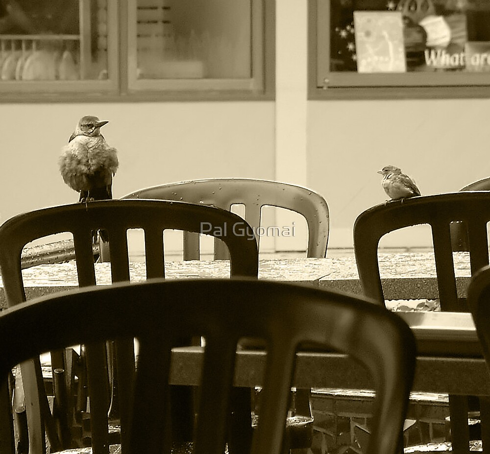 How's The Food Here? by Pal Gyomai