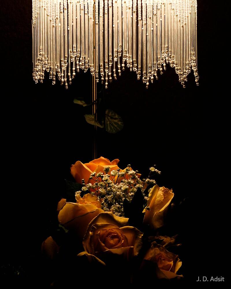 Light and Petals by J. D. Adsit