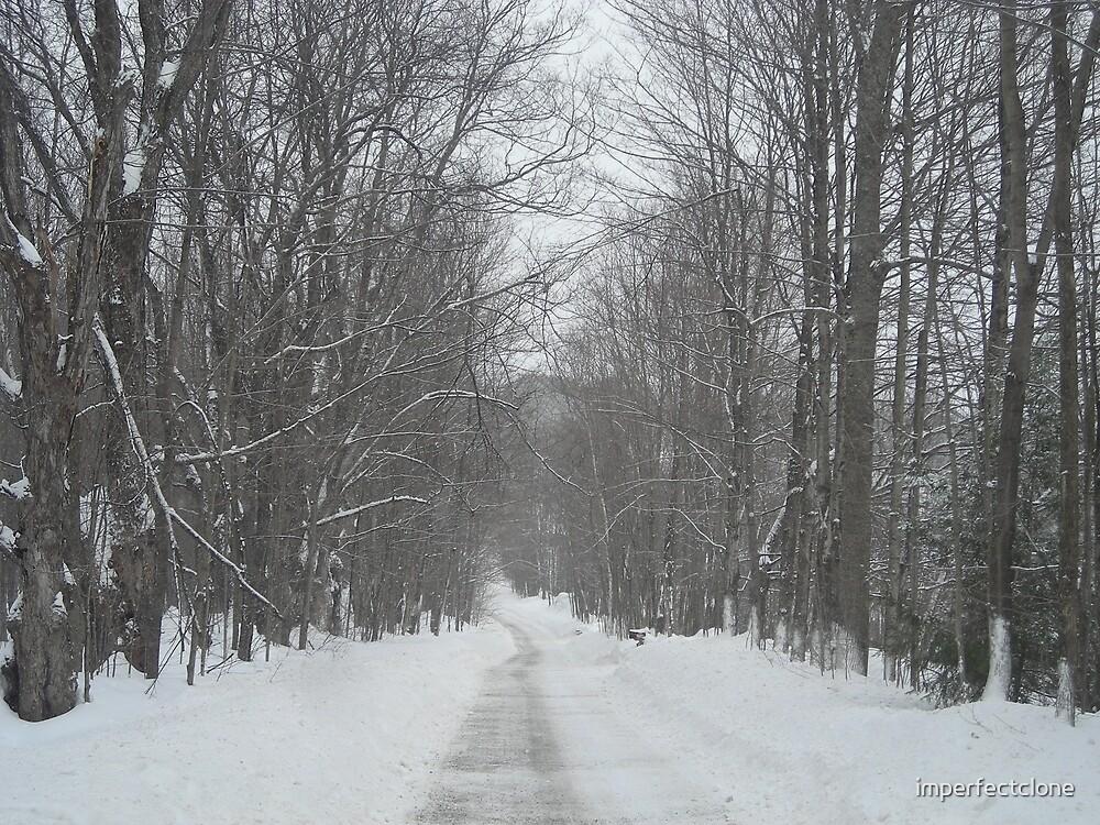 Frozen Road by imperfectclone