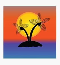 Palm Tree Silhouette Photographic Print