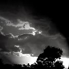 A collection of great storm clouds by Charlie  Single