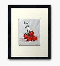 Dutch Tomatoes 3 Framed Print