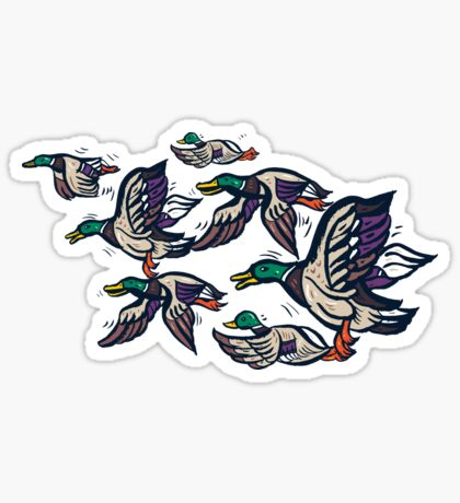 Male Mallard ducks Sticker