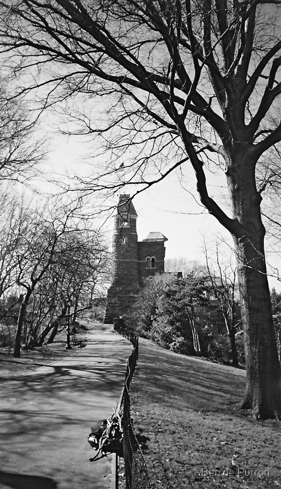 Castle in Central Park  by Ben de Putron