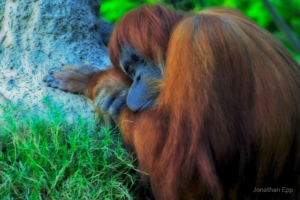 Deep in thought by Jonathan Epp