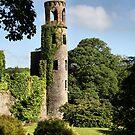 Blarney Castle - County Cork, Ireland by Kim Roper