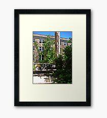 Summertime Lounging  Framed Print