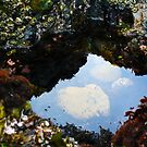 Treasure Cove Tide Pools 01 by IreKire