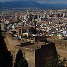 View from Castillo De Gibralfara, Malaga by wiggyofipswich