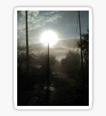 Morning sunlight Sticker