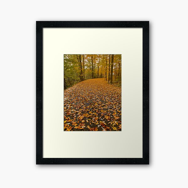 Autumn Trails Framed Art Print