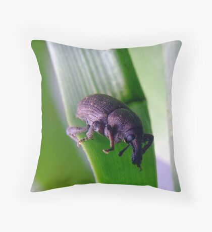 Its a Weevil!!! Throw Pillow