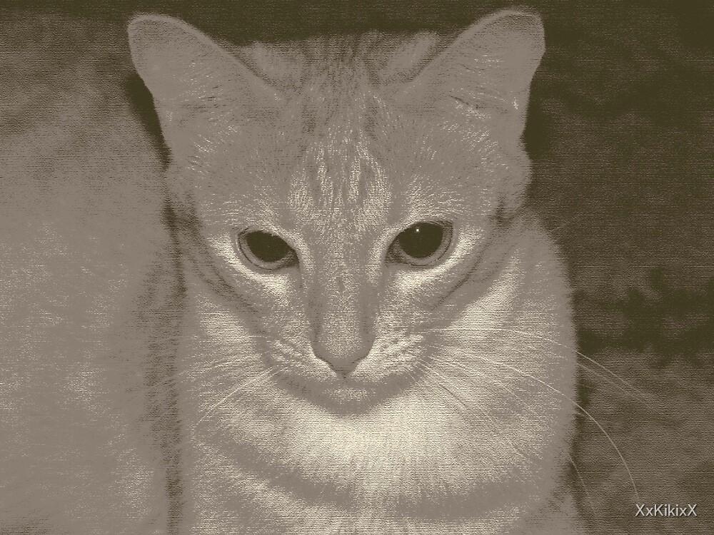 Moby cica by XxKikixX