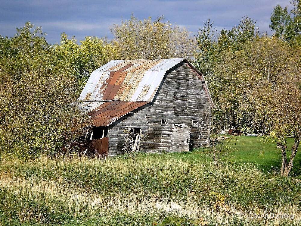old barn by Cheryl Dunning