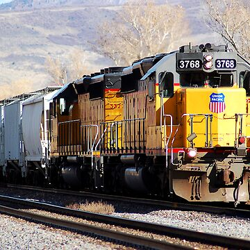 Union Pacific 3768 by BigJess