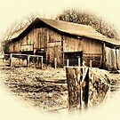 """""""Uncle Judd's Backyard""""... prints and products by © Bob Hall"""