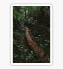 Olympic National Park Forest Trail Sticker