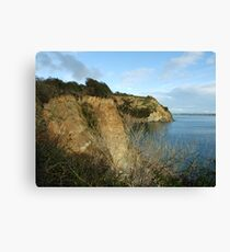 cliffs Canvas Print