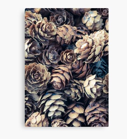 Tiny Pinecones Canvas Print