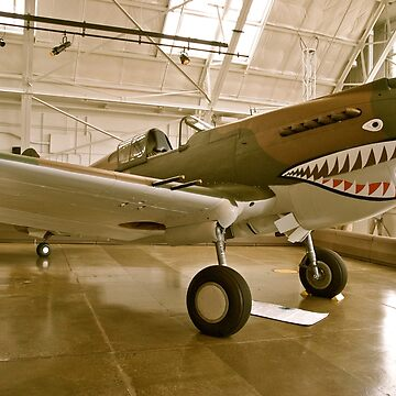 Flying Tiger P40 by Creativesouls