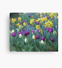 Spring Tulip Garden Canvas Print