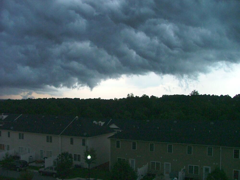 Storm Anyone? by Ferguson