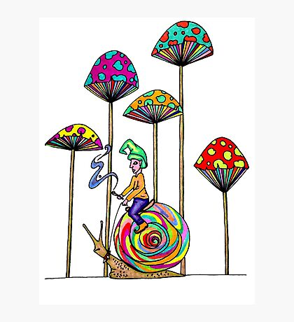 Gnome Snail Ride Photographic Print