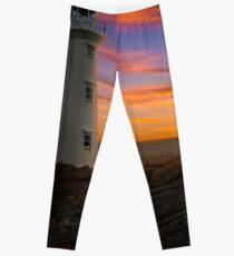 Cape Spear Leggings