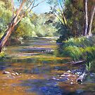 Jamieson River - Kevington by Lynda Robinson