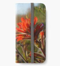 Prairie-fire in the Golden Hour iPhone Wallet/Case/Skin