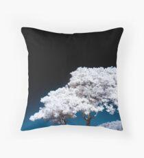 Celestial Sphere Throw Pillow
