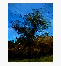 Tree under the Blue Sky Photographic Print