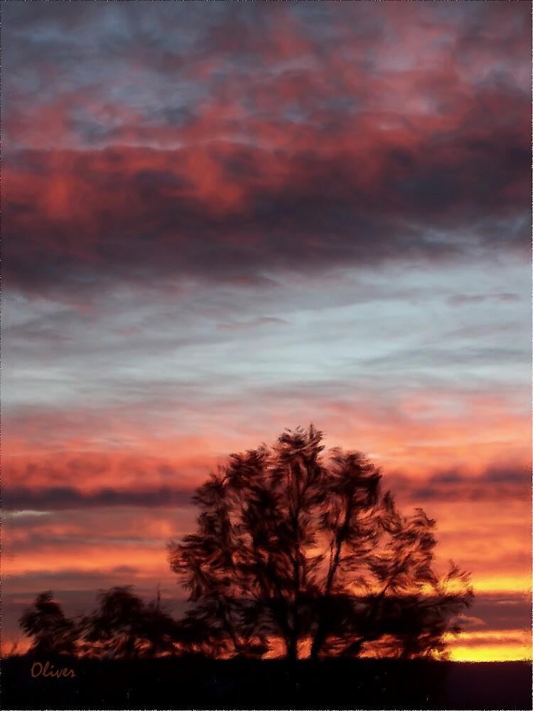 November Vermillion by Charles Oliver
