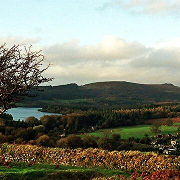 Rural England 2 by kjhart8
