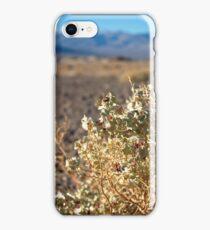 Death Valley Desert Holly iPhone Case/Skin