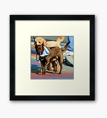No Ifs, Ands, Or Butts! Framed Print