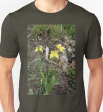 Cowslips in the Don Unisex T-Shirt