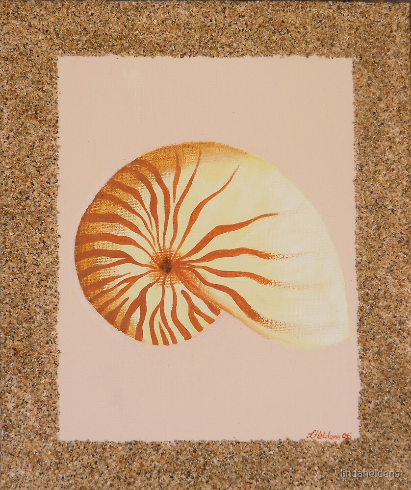 The Shells 3 by lindaheldens