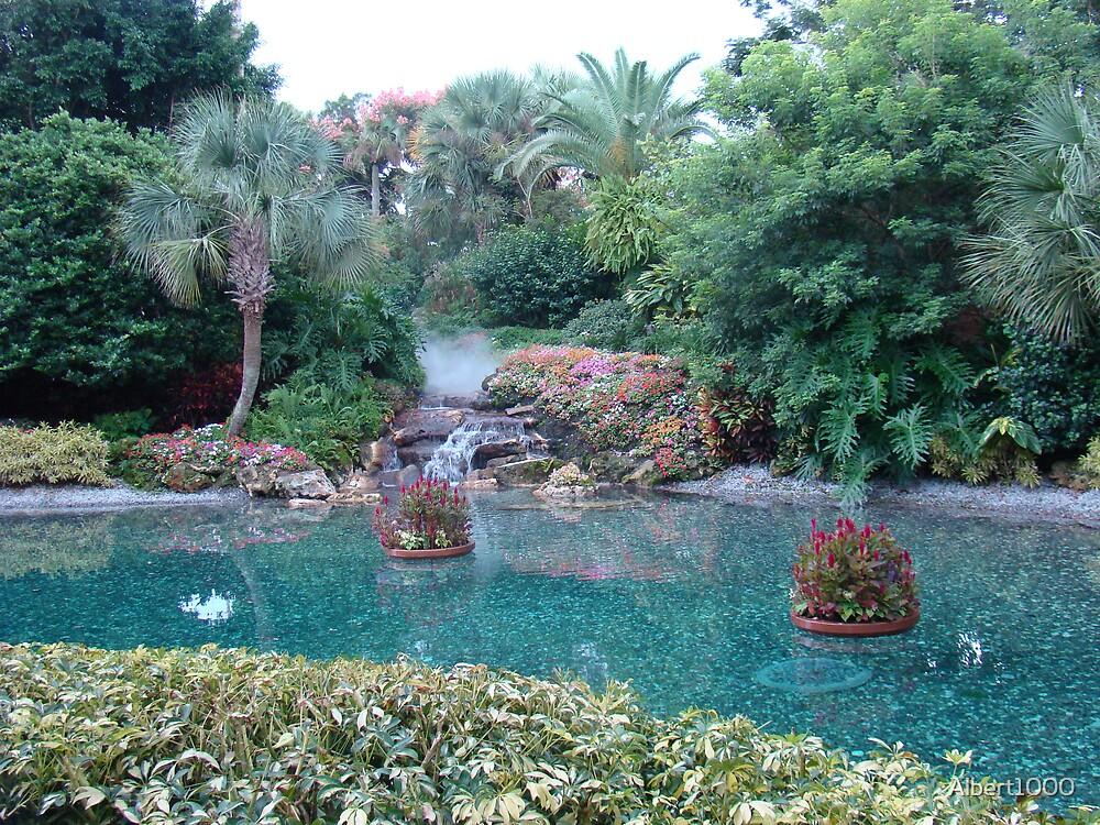 Scenic Florida greenery by Albert1000