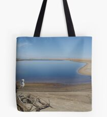 hung out to dry! Tote Bag