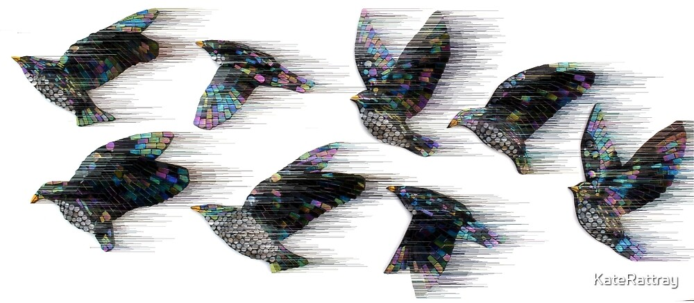 Starlings in the Wind by KateRattray