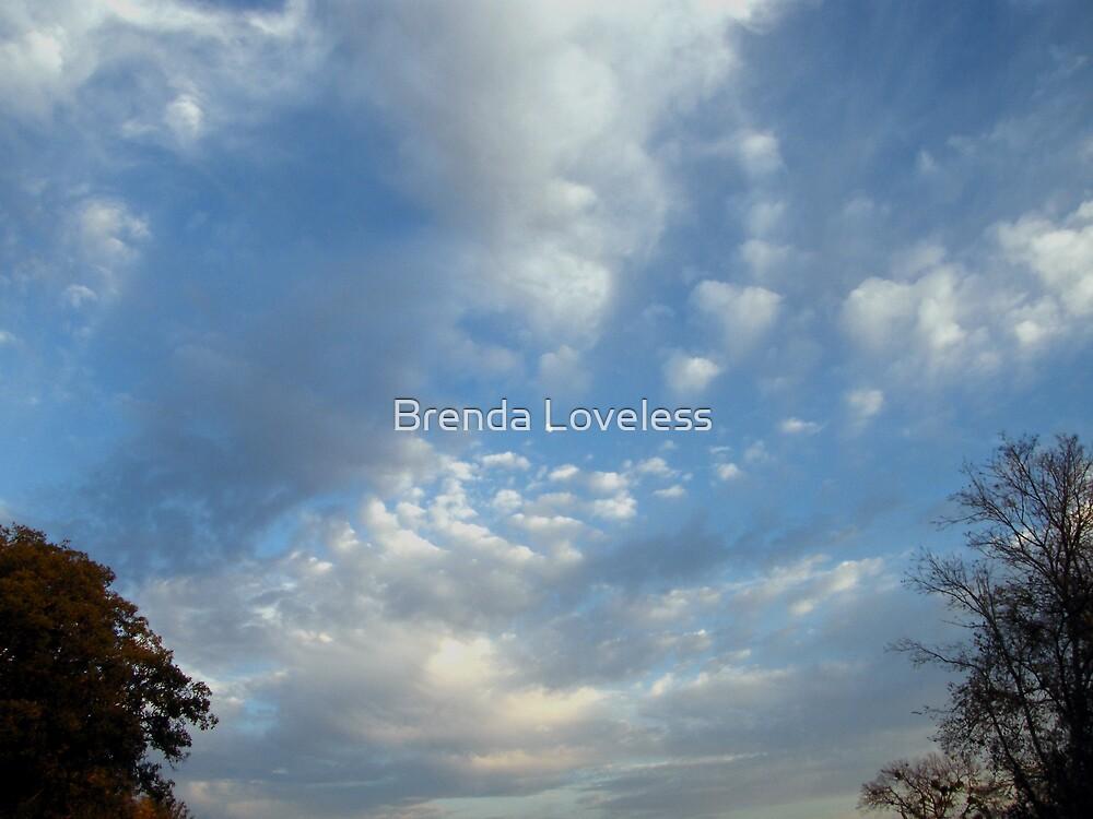 November Vortex by Brenda Loveless