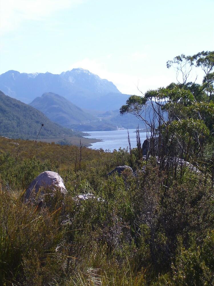 Lake Plimsoll, west coast of Tasmania by gaylene