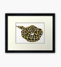 sneaky snake: sneky snek Framed Print